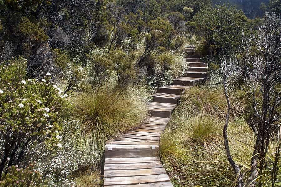 Tasmania S Central Highlands